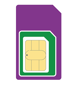 3 SIM Only:  2GB Mobile Data 1 Month